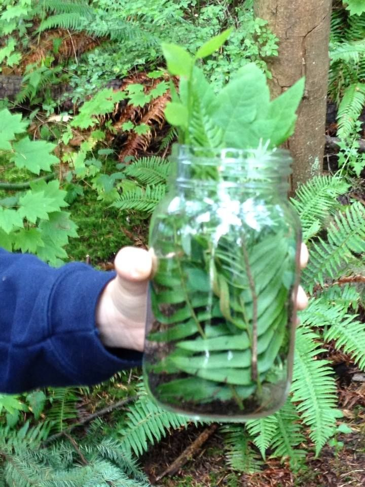 Jar theme. Tell children to choose a theme and find all the items they can with that theme in mind. This activity allows for children to work with other children and learn what things are similar in the environment.