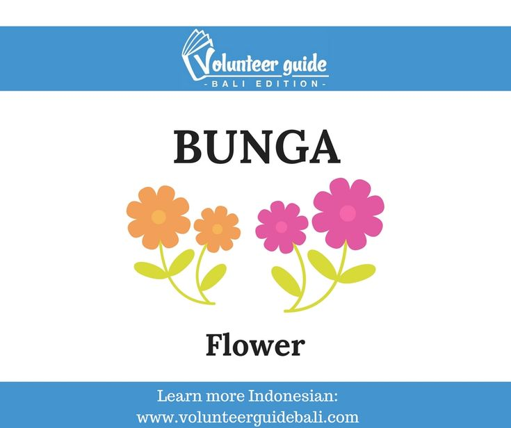 Find more Indonesian Language videos and texts on our website: https://volunteerguidebali.com/learn-indonesian/