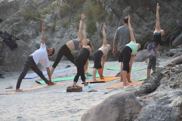 #vinyasa #yoga #ashtanga #teacher #training #india  http://rishikeshvinyasayogaschool.com/100-hour-yoga-teacher-training-india/
