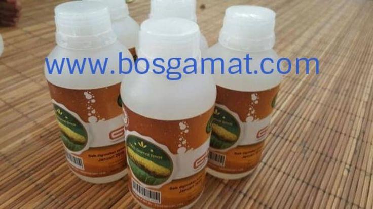 Obat Herbal Darah Tinggi - Selamat datang di story kumparan agen obat herbal jelly gamat resmi. www.bosgamat.com adalah website resmi agen obat herbal jelly gamat. Kami siap mengrimkan produk ke seluruh penjuru tanah air.