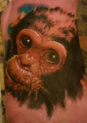 17 best images about monkey tattoos on pinterest top for Monkey face tattoo