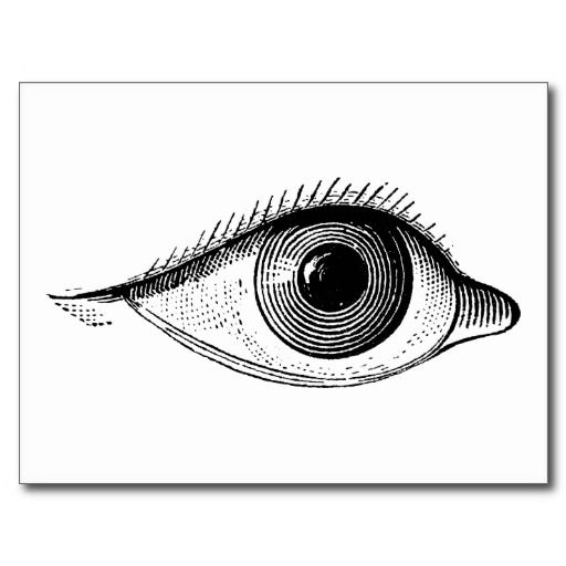 Eye Vintage Human Eyeball Anatomy Postcards