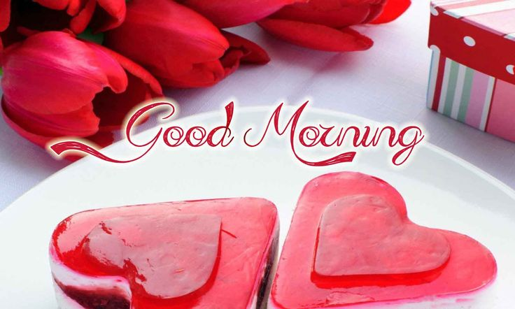 20+ Romantic Good Morning Couple and Love Images - Freshmorningquotes