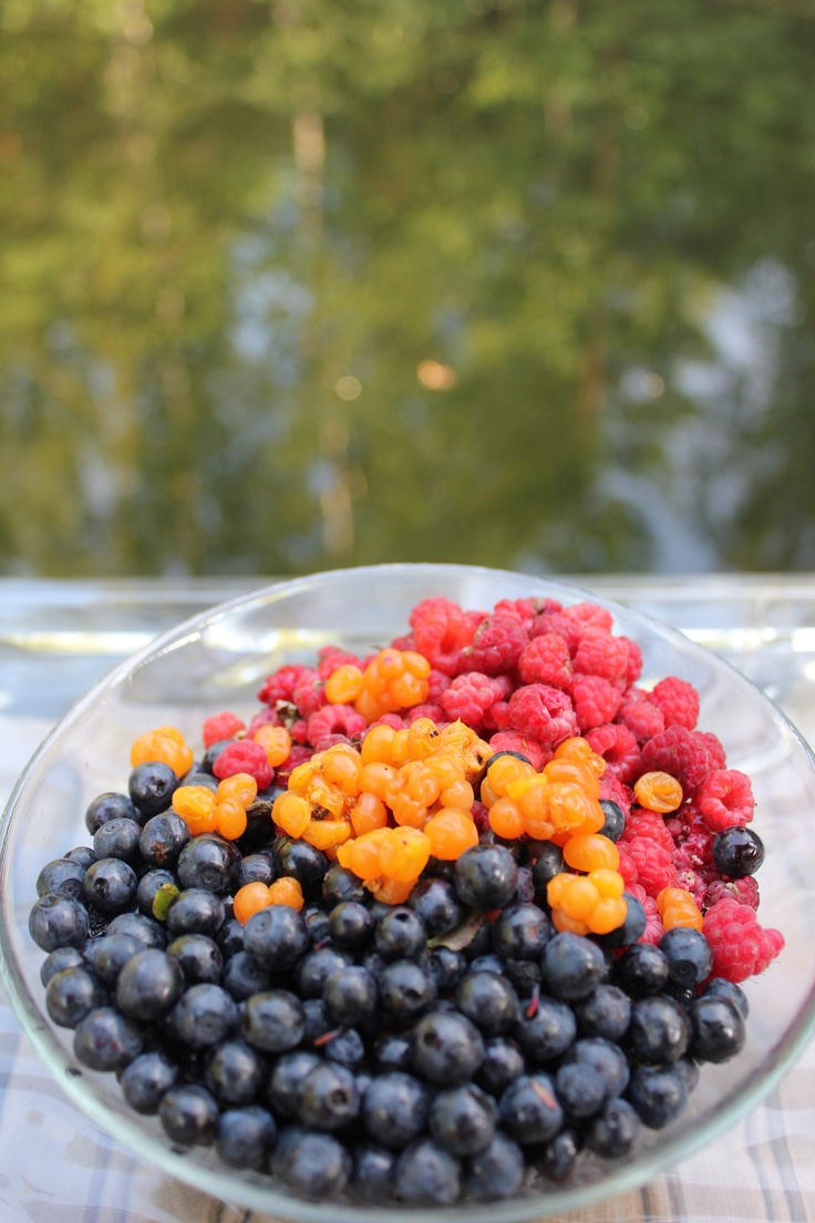 Cloudberry, raspberry, blueberry grown in Finland
