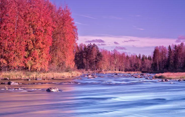 Kiiminki river autumn in Finland.