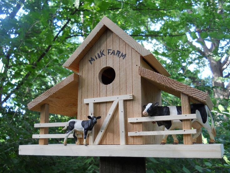 The 51 best Bird Care images on Pinterest   Birdhouses, Bird houses ...