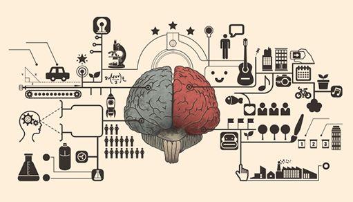 La psychologie des consommateurs vous fascine ? Découvrez les biais cognitifs qui influent vos clients, et comment les utiliser à votre avantage !