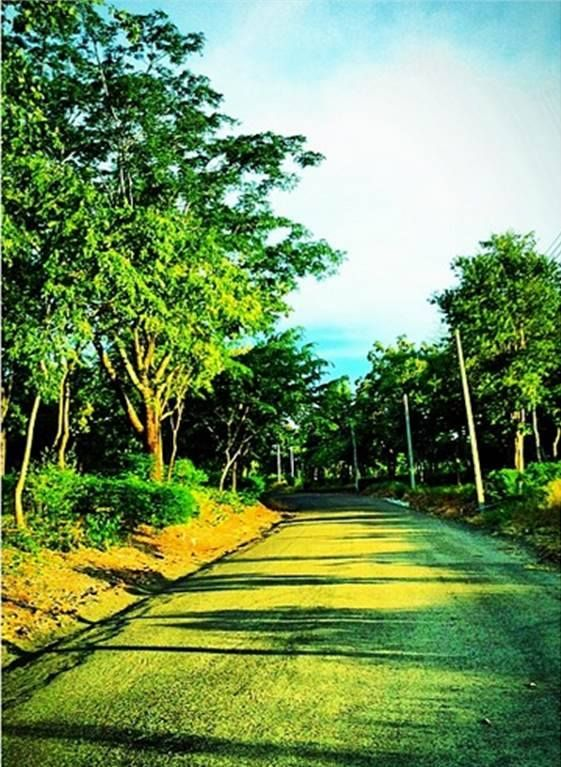 Into the #woods At a #resort in #Nakhonratchasima #Thailand Find #hotel #deals in #Nakhonratchasima GO > http://www.agoda.com/city/nakhonratchasima-th.html?cid=1640564  #travel #vacation #holiday #accommodation #trip
