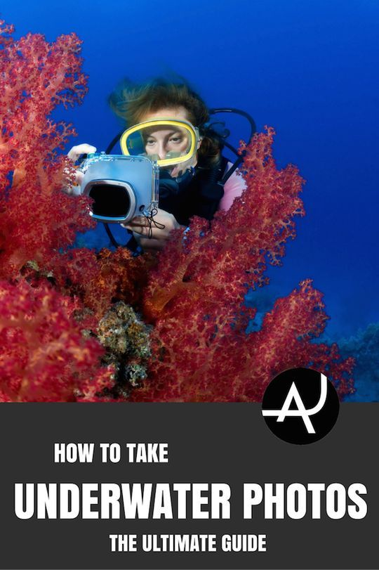 Quick Guide. Lear how to take pictures underwater with these awesome 5 tips. Improve your underwater photography and snap those magical ocean moments.