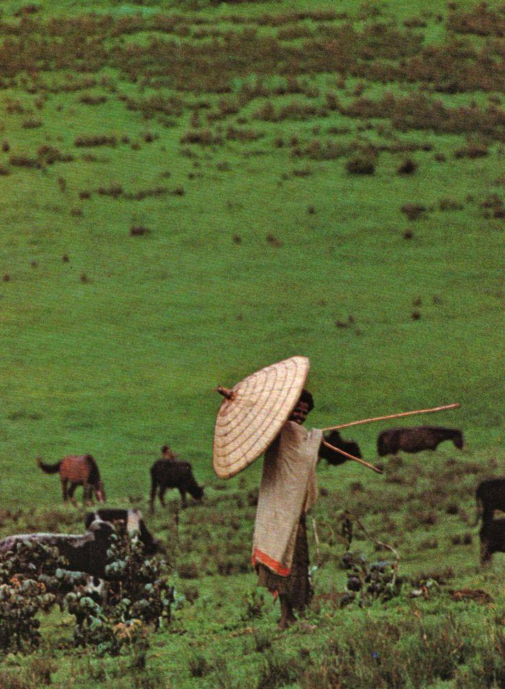 L'Ethiopie de Roger Sauter, photographies de Roland Michaud. Editions Silva, Zurich, 1968.