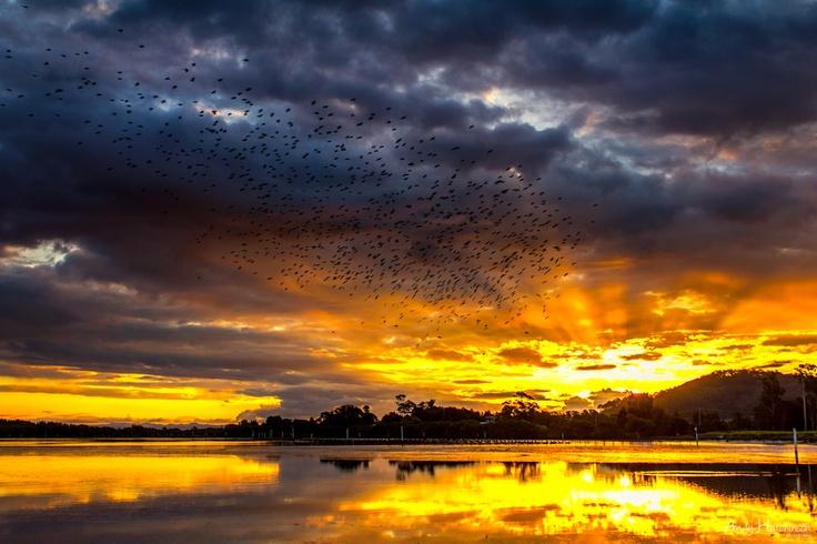 South Coast NSW, Australia at sunset.