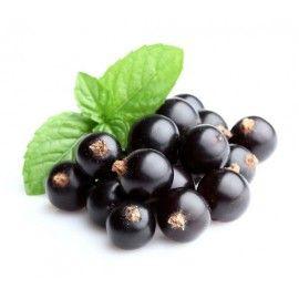 Čierna ríbezľa sa používa pri zápalových ochoreniach, na zníženie krvného tlaku a ako prirodzené diuretikum.Vysoký obsah vitamínu C napomáha imunite organizmu,je bohatá aj na vitamíny E a B. Vďaka vysokému obsahu železa a mangánu podporuje tvorbu červených krviniek.V šupke plodu sa nachádzajú látky, ktoré zbavujú tráviaci trakt jedov. MÚKA Z ČIERNYCH RÍBEZLÍ obsahuje všetky pozitívne vlastnosti surového ovocia. Je vhodná pre ľudí intolerantných na laktózu a pre vyznávačov paleo kuchyne.