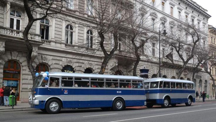 IHO - Közút - Centenáriumi buszünnep a Városligetben