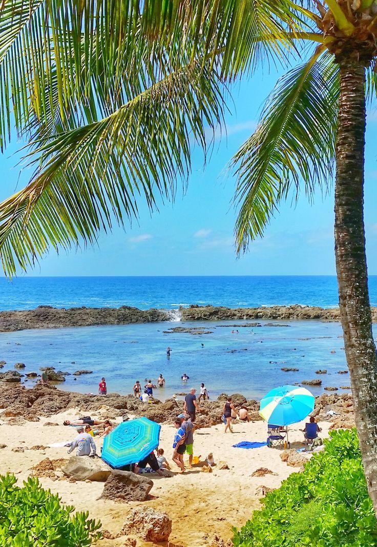 Best 25 hawaii packing lists ideas on pinterest maui for Fishing spots oahu