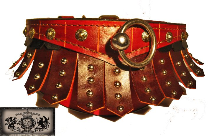 Gladiator collar:  Completely original leather dog collar, all leather, hand crafted to emulate the gladiator skirting.  Custom to any size.  Check out my site:  www.etsy.com/shop/olicollars