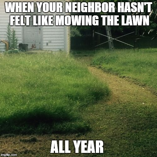 Funny Memes For Neighbors : We bet there are garden gnomes lost in somewhere if
