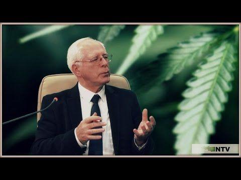 … Jerzy Zięba … o oleju CBD …   Medycyna naturalna, nasze zdrowie, fizyczność i duchowość