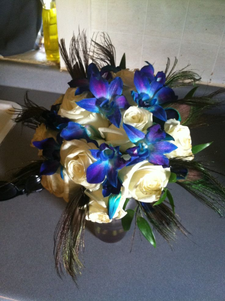 Best images about teal and blue orchids on pinterest