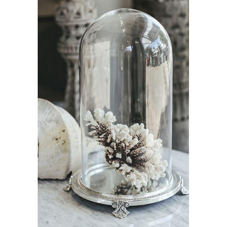 Manyara Home :: Decorative :: Glass Dome On Silver Base