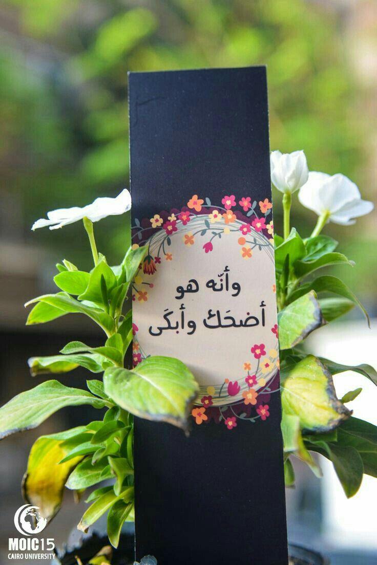 ﴾et que c'est Lui qui a fait rire et qui a fait pleurer﴿  {An-Najm : 43 }