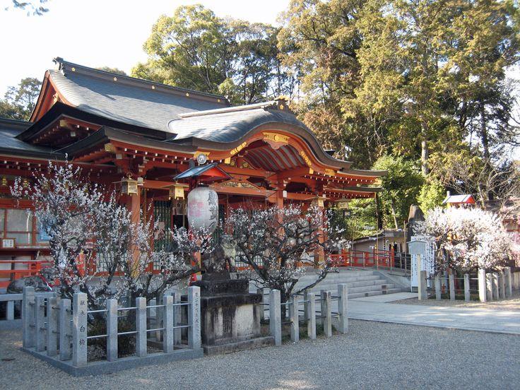 長岡天満宮の本殿は1941年に京都の平安神宮の社殿を移築、 弁天池の周辺は、回遊式庭園「紅葉庭園 錦景園」として近年整備し直した。