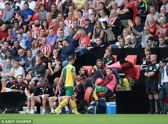 Southampton 3-0 Norwich City English Premier League 2015-16 EPL football result: Graziano Pelle and Dusan Tadic earn Saints a first win of the season after Steven Whittaker sees red | Daily Mail Online