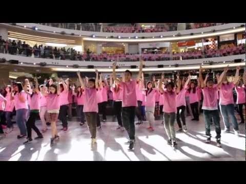 Anti-Bullying Flash Mob Richmond School District No.38 --  500+ students, teachers, parents, and Richmond School District staff, announced their stand against bullying by performing a pink shirt flash mob on all 3-floors of Aberdeen Centre Mall in Richmond, BC on February 26th, 2012.