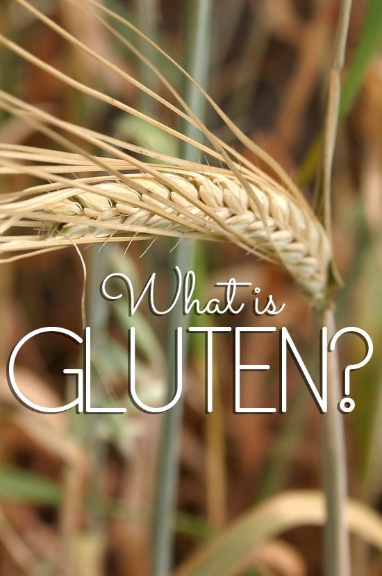 WHAT CAUSES GLUTEN INTOLERANCE? What is gluten? There are a variety of reasons why one is Gluten Intolerant…from Celiac's Disease to a straight-forward Allergy.