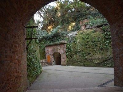 『天空の城ラピュタ』の廃墟にそっくりと評判の『猿島』の要塞遺跡