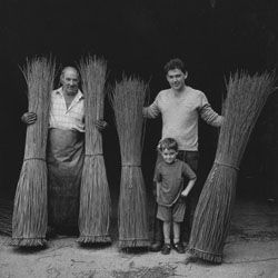 Three Generations of the Musgrove family, Withy Growers, Westonzoyland, Somerset 1996 - Copyright Chris Chapman