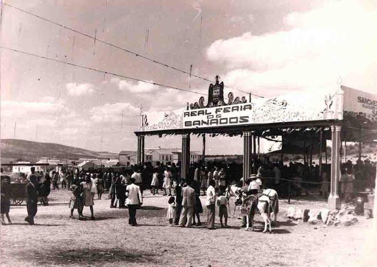 Antigua Feria de Ganados. Años 40. La Feria de ganado duró casi hasta los 60. Luego vino la feria de maquinaria ...