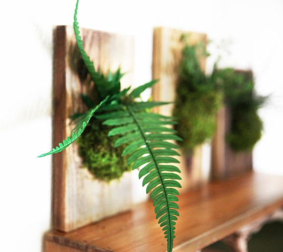 Set of 3 Hanging Fern and Moss Rustic Wood Flat by ArtisanMoss
