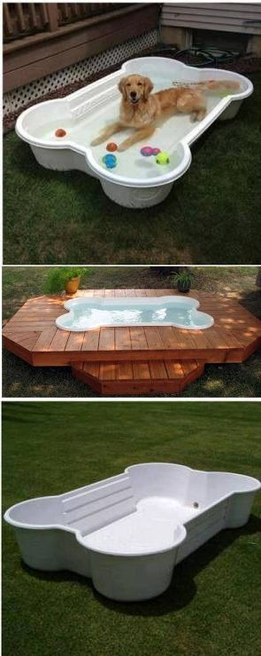 How to Make a Dog Pool Shaped Like a Bone – DIY