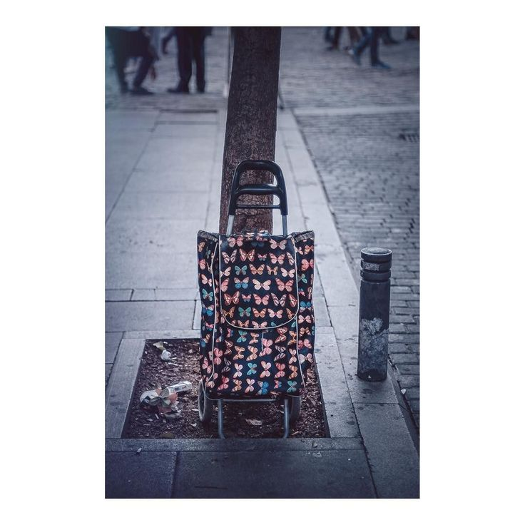 Comprando mariposas _ Buying butterflies imarchi      #carrodelacompra #shoppingcart #mariposas #butterflies #streetphoto #streetlife #streetphotographer #puertadelsol #madridmemola #madrid #igersmadrid #ig_madrid #themadridbible #madridmola #instamadrid #streetphotography #street #spain #españa #inspiramemadrid #picoftheday #photooftheday #leftovers   Imarchi photography  Also in Instagram here: http://ift.tt/2hfGI93 photographers on tumblr original photography Spanish photographers imarchi…