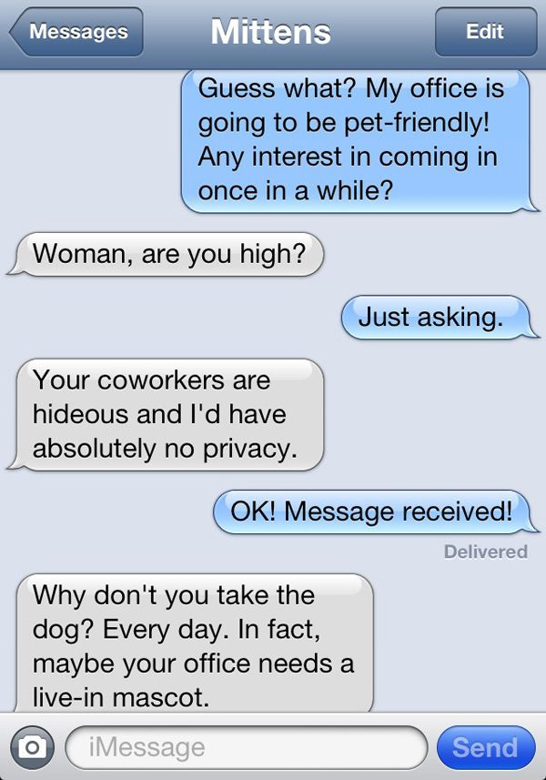 'Texts from Mittens' collects 100% real text messages from ...