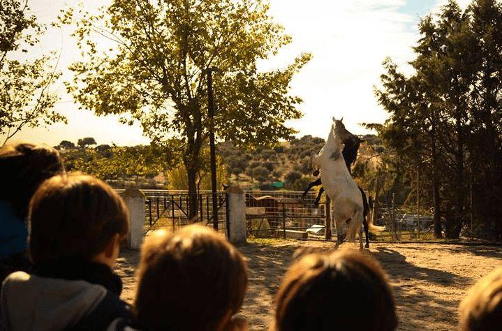 Os traemos, dentro de los mejores planes con niños en Madrid un especial: Planes con niños en Madrid: especial parques de ocio.