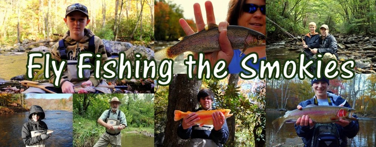46 best images about townsend tn things to do on for Fishing in gatlinburg tn