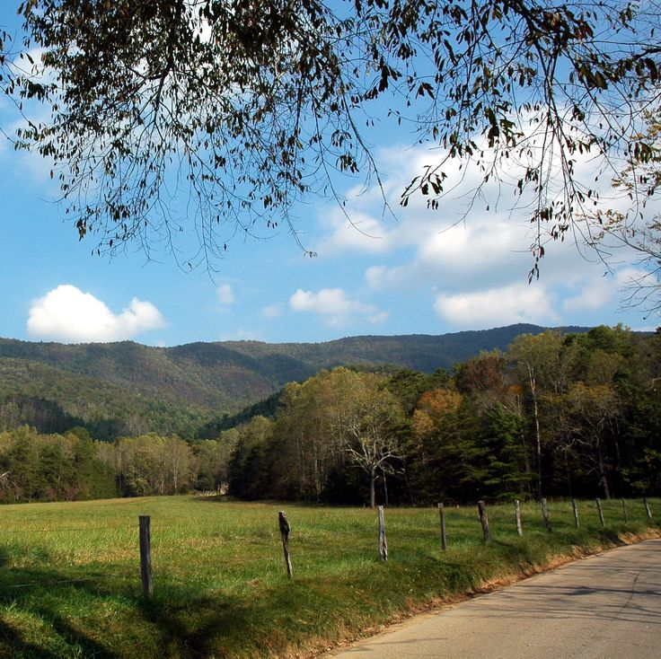 a visit to cades cove essay The smokies trip planner is the official trip planning guide to great  cades  cove cataloochee clingmans dome roaring fork and others.