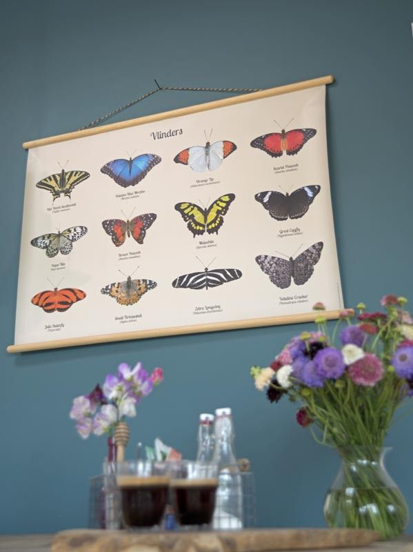 De schoolplaat Vlinders is een geweldige blikvanger voor aan de muur. Op werkdagen voor 21.00 uur besteld, de volgende dag in huis.
