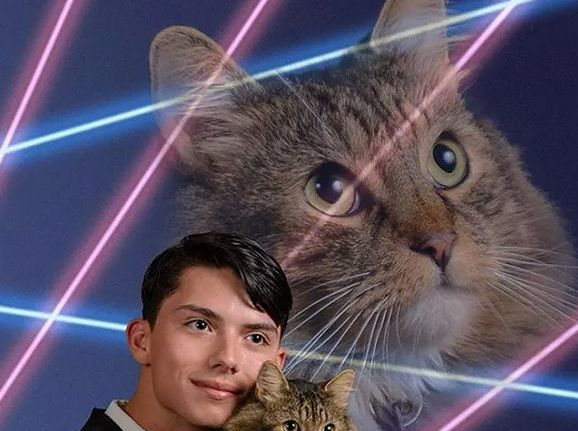 High school senior creates petition to include his cat and some lasers in his yearbook photo.