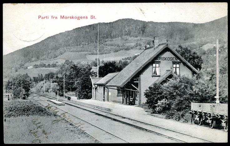 Akershus fylke Eidsvoll kommune MORSKOGEN station. Dovrebanen.Nærmotiv. Eneret Georg Dreiers forlag