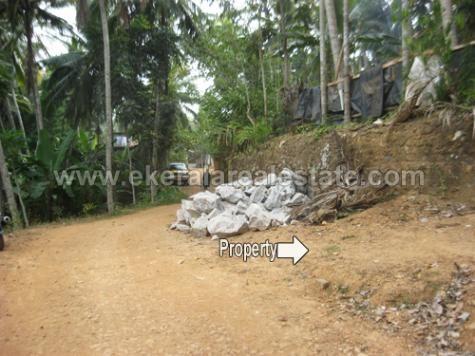 Residential Plot for Sale in Karakulam Trivandrum Karakulam real estate
