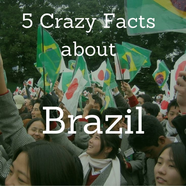 1. There are prisons in Brazil that give inmates the option to lower their sentences by pedaling stationary bicycles to power street lights in nearby cities, or reading books and writing reports on them. Find out more crazy facts about Brazil on our Work and Travel Facebook Page: https://www.facebook.com/CCIGreenheartWorkandTravel/