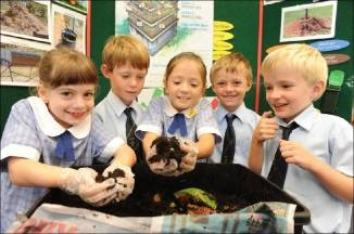 Worm farms were fascinating for  students at Sacred Heart Primary School, Mosman.