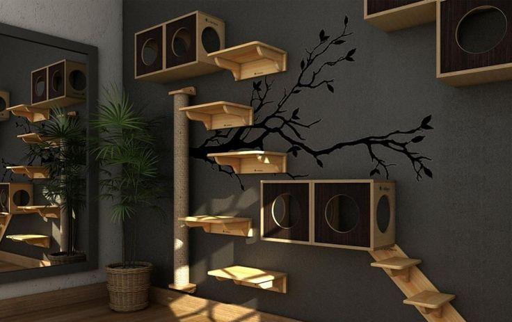 Cats climbing landscape idea shelves wood boxes