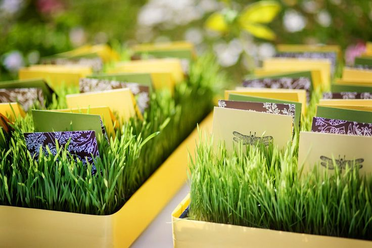 wheatgrass escort cards
