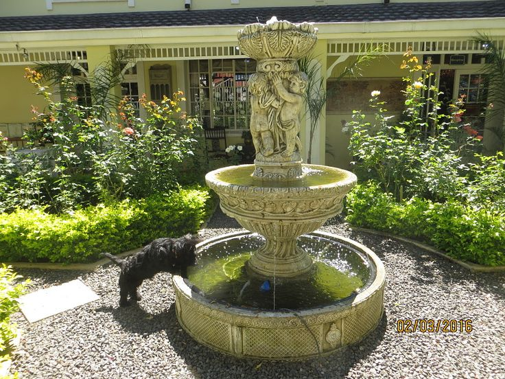 De Ark Guesthouse front garden