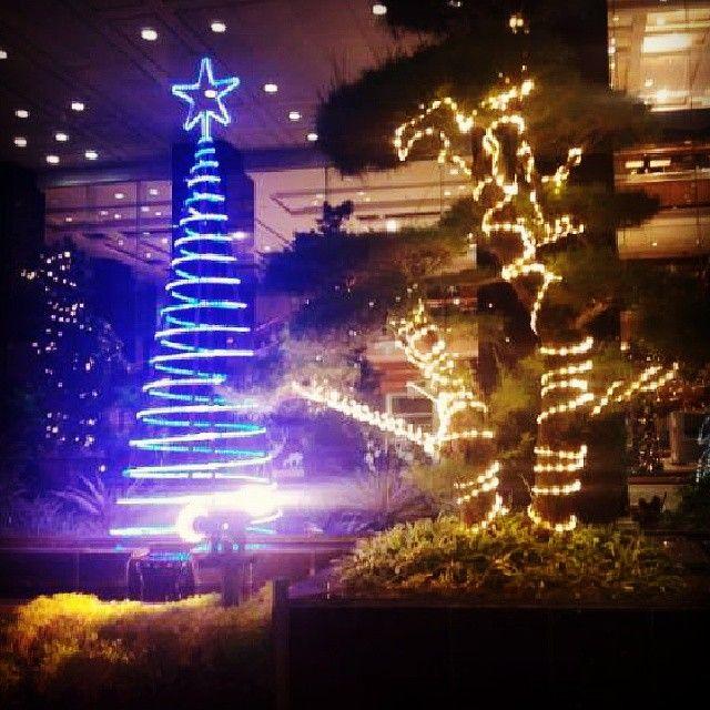 Hari Natal telah didepan mata mari kita sambut dengan sukacita dan rasa syukur #Pohon #Terang #Natal #Cahaya by viridaa