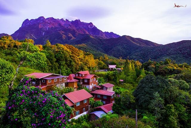 Kinabalu Park, Malaysia. World Heritage Site