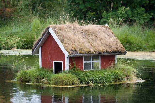 Duck house how cute gotta love the furry babies for Small pond house plans